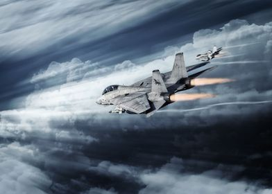Grumman F14-D Tomcats of VF-213 the Black Lions