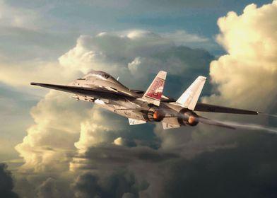 US Navy F-14 Tomcat gets airborne