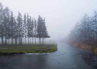 A foggy day turned into out to be an inspiring day for  ...