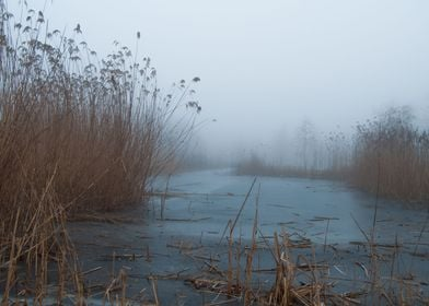 A frozen lake surrounded by a beautiful fog and nice co ...