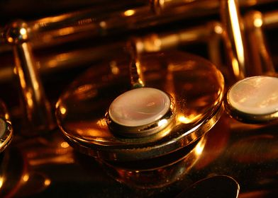 My Saxophone in Detail
