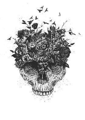 My head is a jungle (b&w)