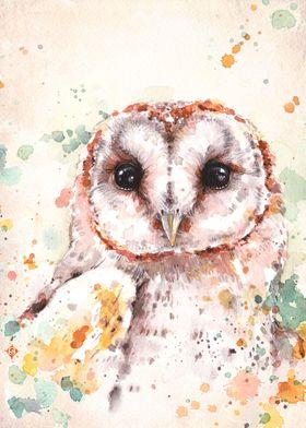 """Australian Barn Owl""  Water Colour Art"