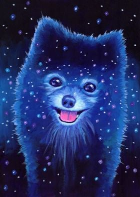 Space Pomeranian!