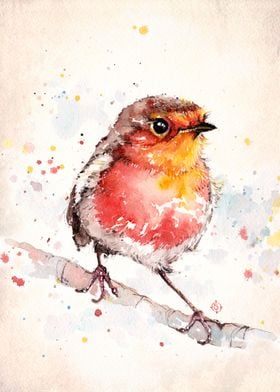 """""""Adventure Awaits (Baby Robin Red Breast)""""  Water Colou ..."""
