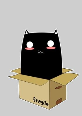 Black Cat in a Box. An ordinary Black Kitten with super ...