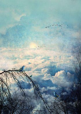 HEAVENLY BIRDS III-A1