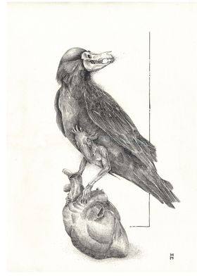 Crow I