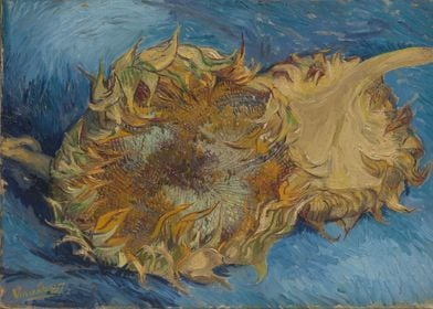 Vincent van Gogh - Sunflowers, 1887, oil on canvas; Col ...
