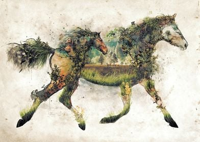 The horse another in my original art nature animal surr ...