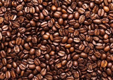 Beautiful Coffee Beans