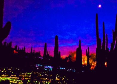 Arizona lightshow. Botanical garden in Phoenix at sunse ...