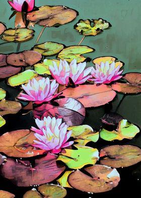 Lilypad art taken in Brooklyn, New York at the botanica ...