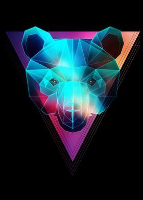 Cosmic Bear Triangle