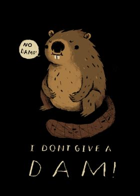 i dont give a dam!