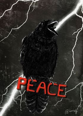 Crow For Peace
