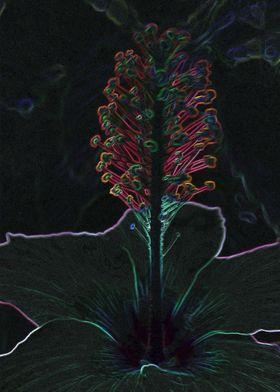 velvet colored flower
