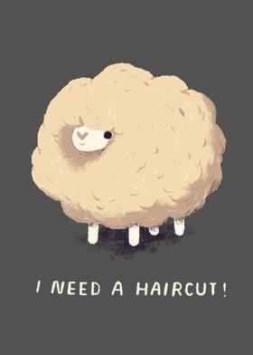 i need a haircut!