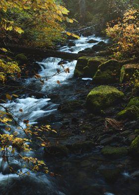Falls Creek Cascades