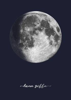 Waxing Gibbous Moon - Latin - On Navy Blue