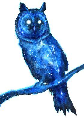 Space Owl / Double Exposure Animals