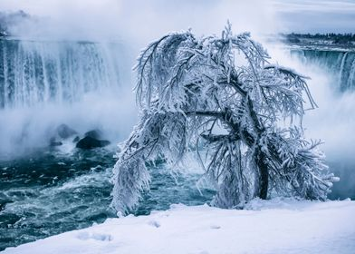 A Frozen Niagara