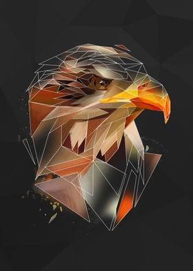 Eagle - sketch