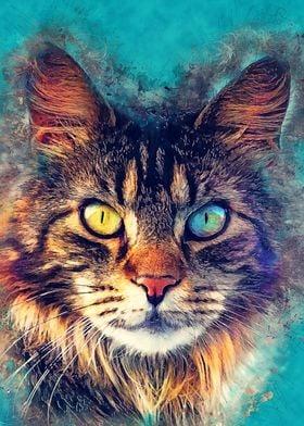 cat Friday