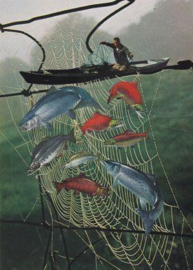 Salmon Trap [collage]