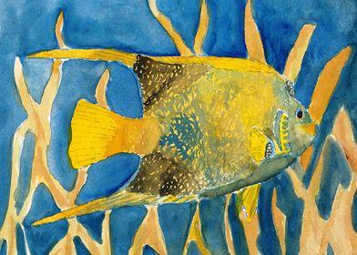 Tropical Fish Beach Art