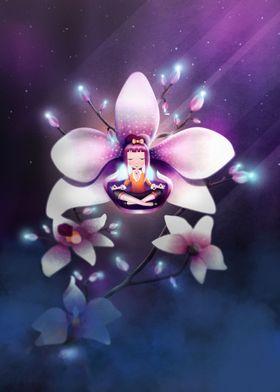 Magnolia Zen Meditation