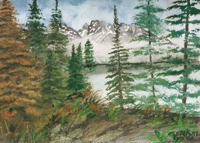 Jackson Hole Mountain Landscape