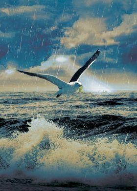Bird of Hope II