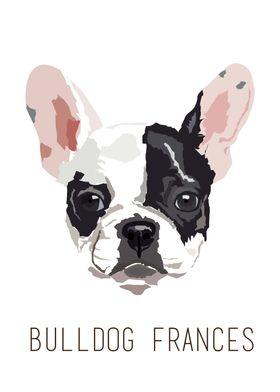 love Bulldog Frances