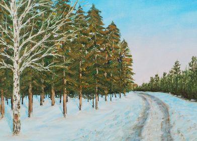 Frozen Path