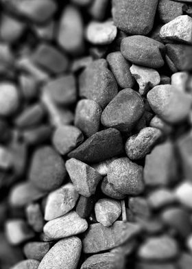 Earth Rocks
