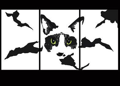 Black and white Catto