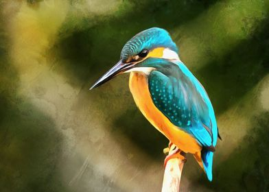 Kingfisher Modern Home Art