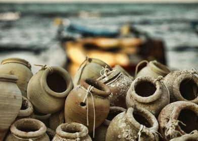 Saison de pêche du poulpe