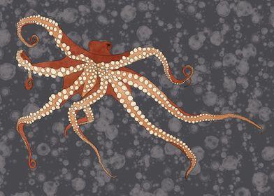 Rad Orange Octopus