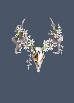 Floral Deer Skull