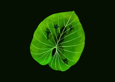 Tropical Frog on a Leaf
