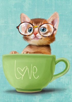Kitten with big glasses