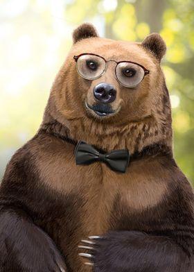 Mr Bear portrait