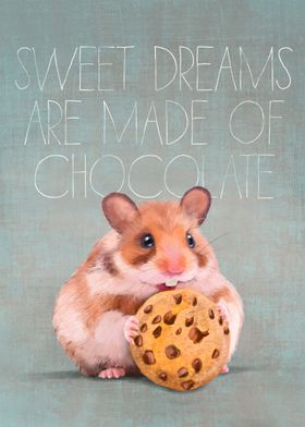 Sweet dream choco biscuit
