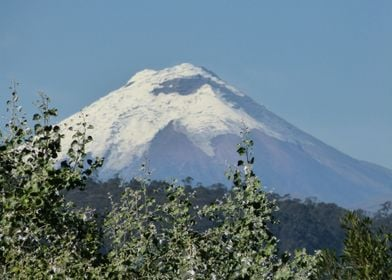 Contemplating the Cotopaxi