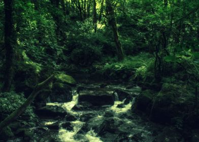 The stream through