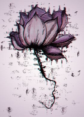 purple lotus fragments