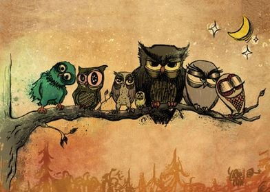 Nighttime Owls