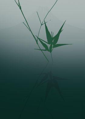 Bamboo reflected